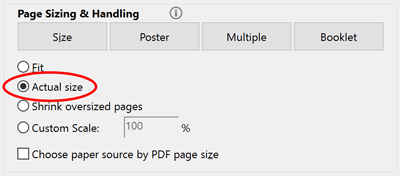 Page sizing and options